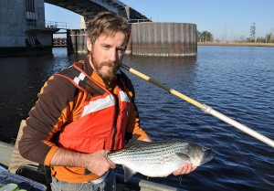 Fish Story?: RS improves migration of iconic shad fish into Piedmont