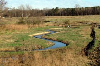 Bill approved by Senate would reduce stream mitigation in NC